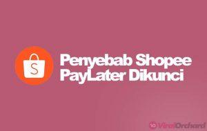 Kenapa Shopee PayLater Dikunci Karena Masalah Keamanan