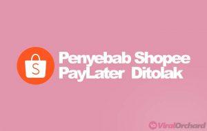 Penyebab Kenapa Pengajuan Shopee Paylater di tolak